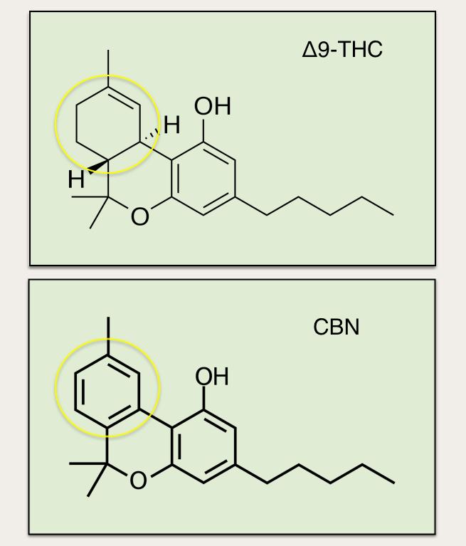 THC and CBN